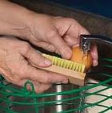 TripleLima egg washing